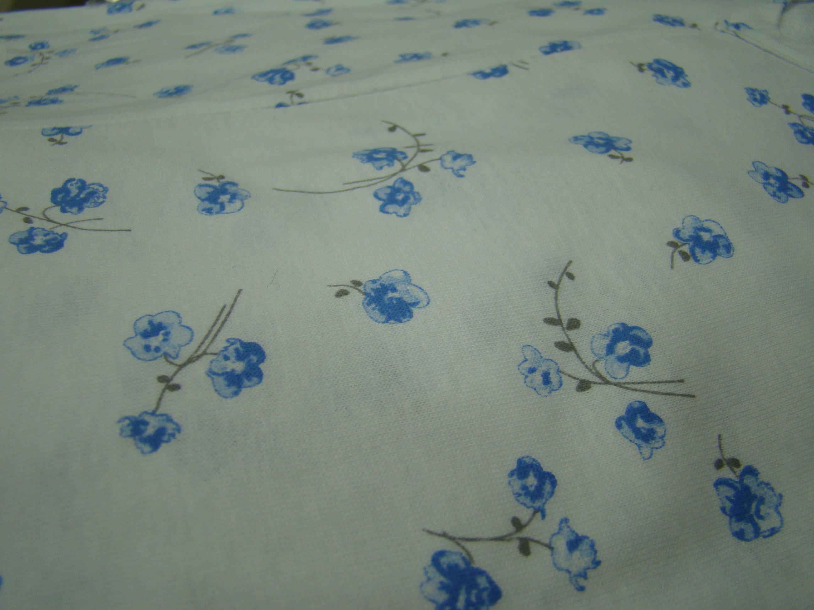Fiori azzurri con gambo