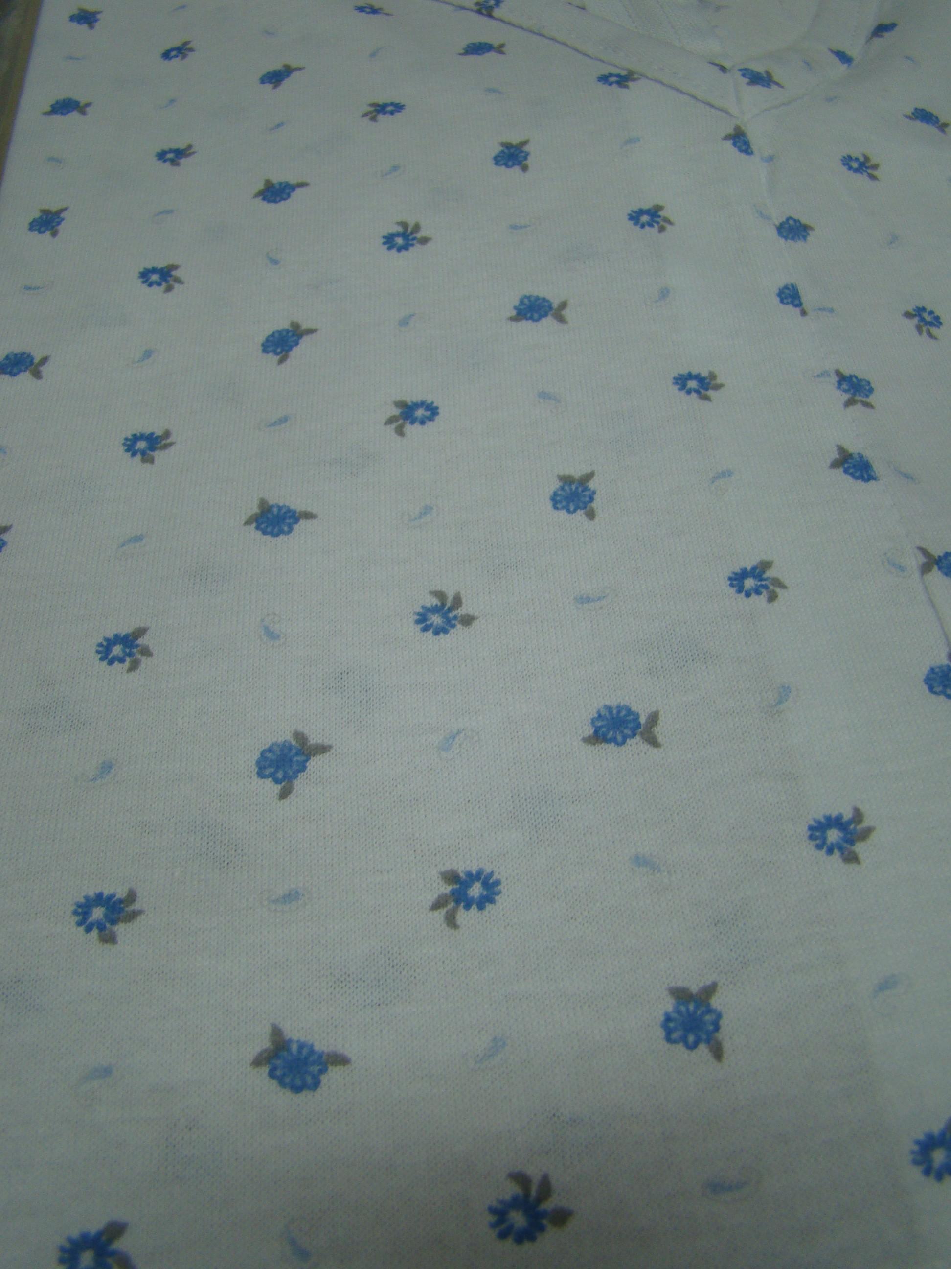 Margheritine azzurre